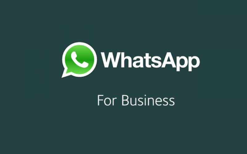 WhatsApp Business: Here's Zuckerberg's Strategy
